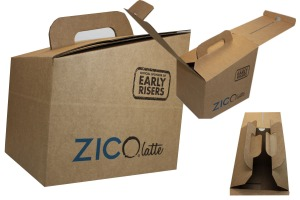 TTSLB Zico Collage